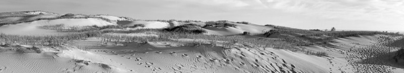 Dunes in Black and White