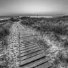 The Boardwalk, Elberta in Black and White