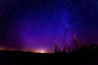 Stars over Elberta