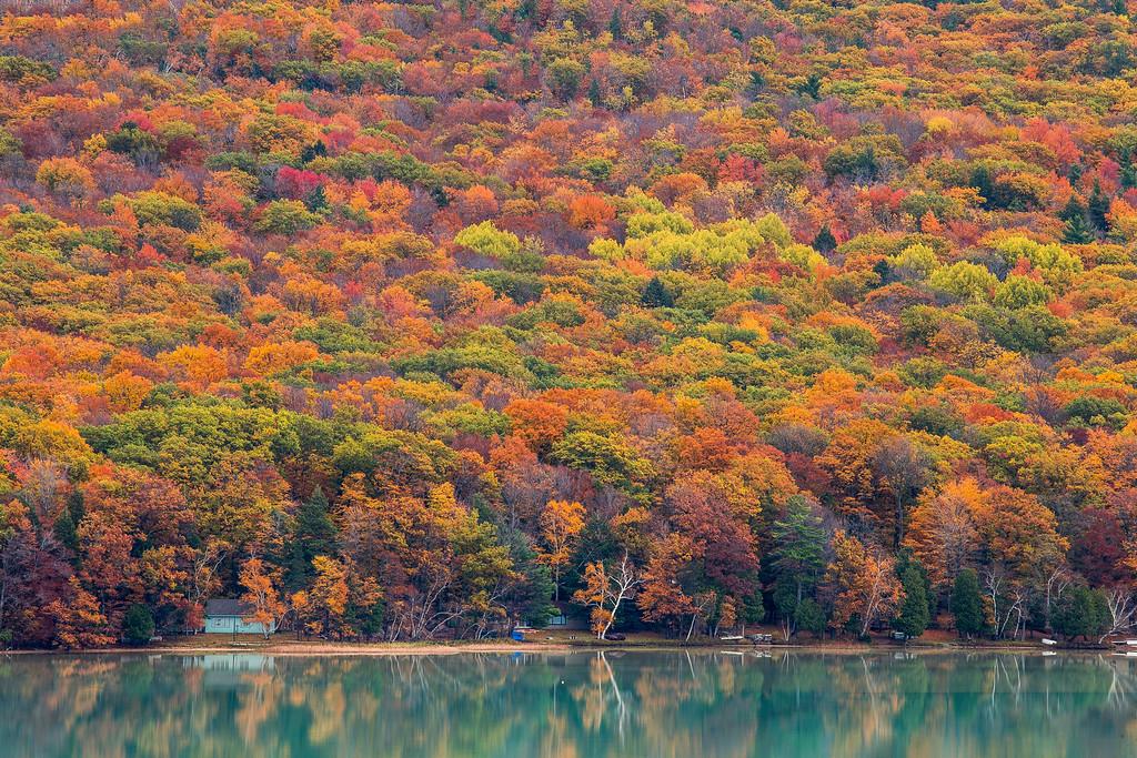 Fall Trees over Glen Lake