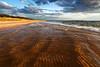 Gold Lined - Esch Road Beach (Sleeping Bear Dunes National Lakeshore - Michigan)