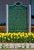 An historic sign of the Post Office with tulips in Holland, Michigan, USA.