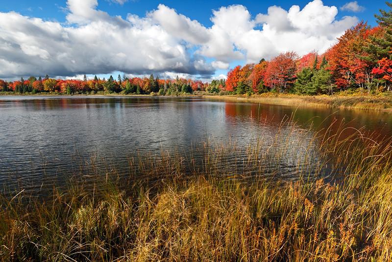 Autumn Quintessence- Otter Lake (Hiawatha National Forest - Upper Michigan)