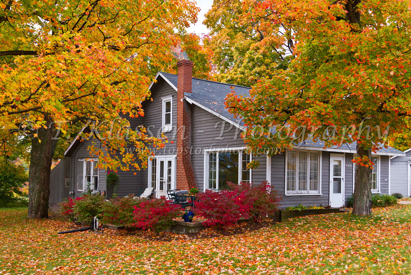 A home in the forest with fall foliage color along Highway 119 in Michigan's Lower Penninisula.