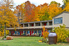 A motel in the forest with fall foliage color in Marquette, Michigan, USA.