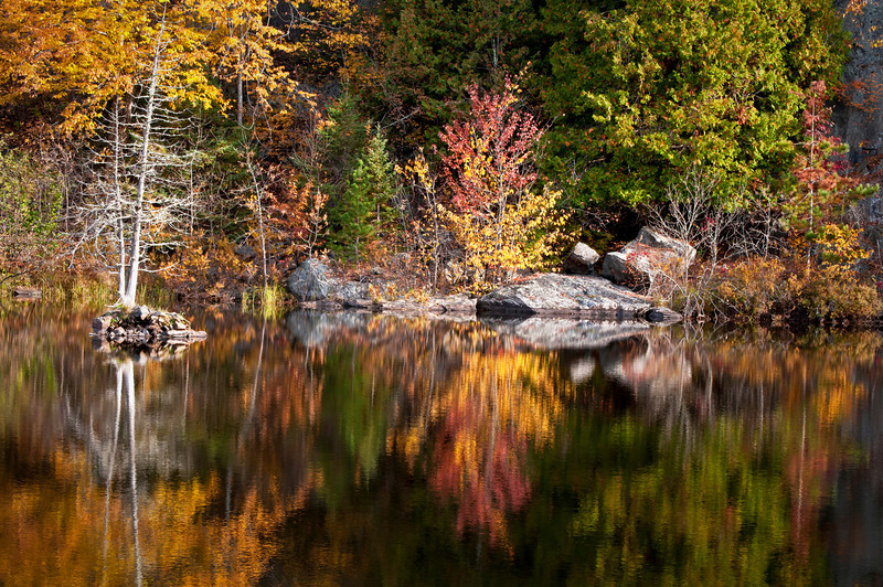 MI 181<br /> <br /> Vibrant fall colors at sunrise on the Michigamme River near Crystal Falls in the Upper Peninsula of Michigan.