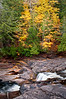 M 147<br /> <br /> Fall color along the Presque Isle River just above Manido Falls in the Porcupine Mountains Wilderness State Park, Michigan.