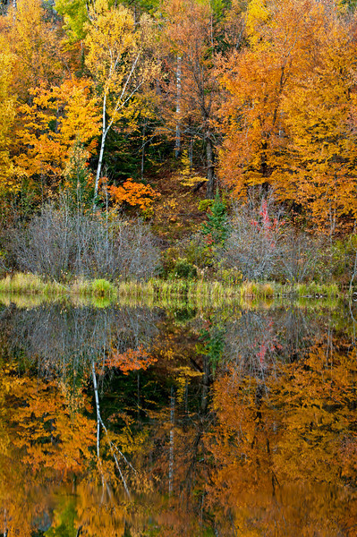 MI 172                        Autumn colors illuminated by the light of a setting sun are reflected in the calm surface of the Michigamme River near Crystal Falls in Michigan's Upper Peninsula.