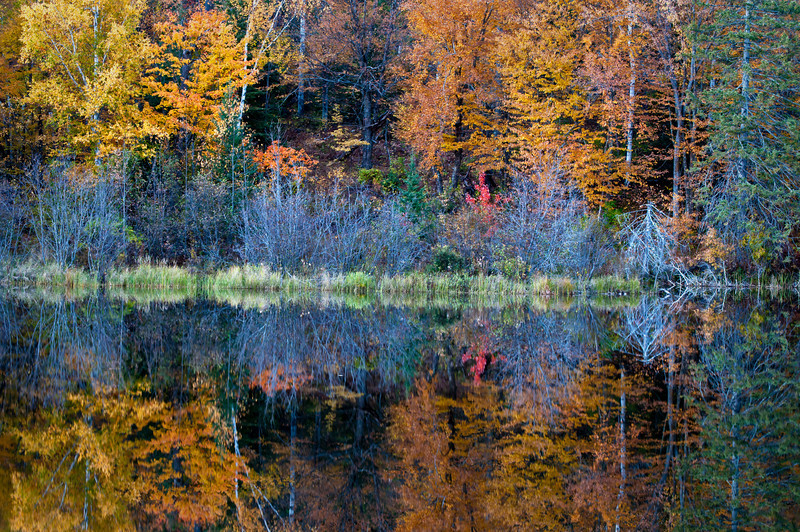 MI 170                        Autumn colors illuminated by the light of a setting sun are reflected in the calm surface of the Michigamme River near Crystal Falls in Michigan's Upper Peninsula.