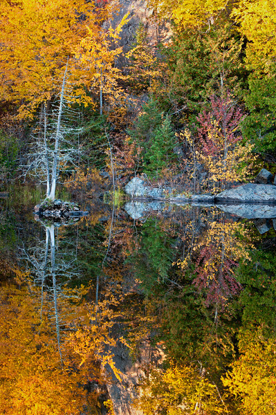 M159                            Autumn colors illuminated by the light of a setting sun are reflected in the calm surface of the Michigamme River near Crystal Falls in Michigan's Upper Peninsula.