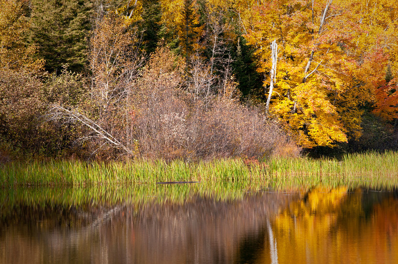 MI 182                        Fall colors on the Michigamme River in the Upper Peninsula of Michigan.