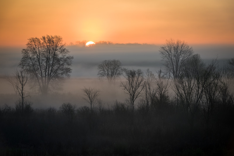 MI 227<br /> <br /> The sun illuminates the mist rising over a wetland conservation area in southeastern Michigan.