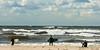 Surfer admire the Lake Michigan wave spectacle. St. Joseph, MI<br /> <br /> MI-081026-0233