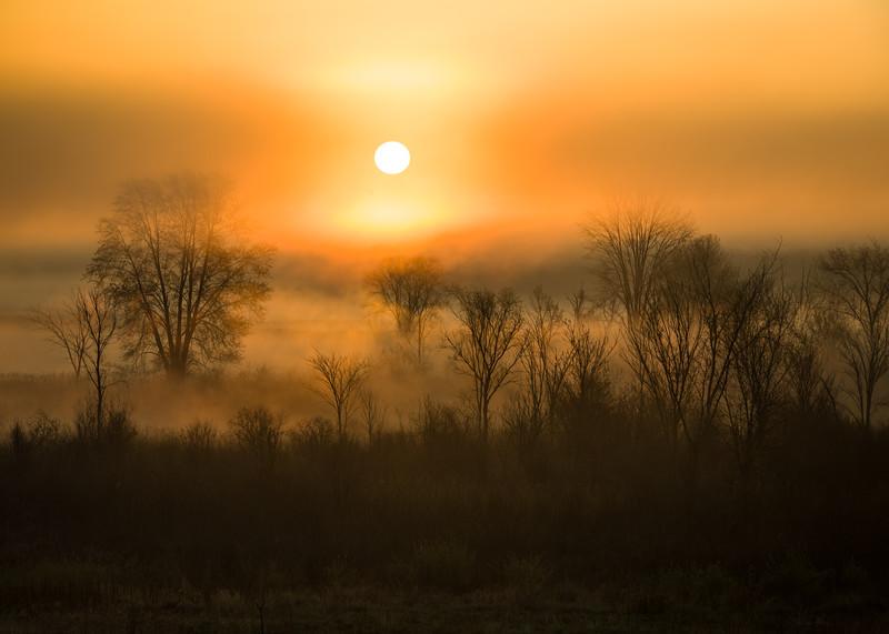 MI 226<br /> <br /> The sun illuminates the mist rising over a wetland conservation area in southeastern Michigan.