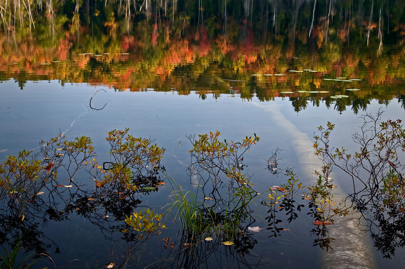 MI 018                      Autumn reflections at sunrise on the surface of Red Jack Lake in Hiawatha National Forest, Michigan.