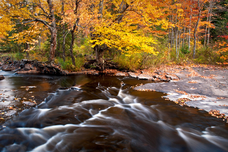 MI 200                          Autumn color at dusk on the Sturgeon River in Michigan's Upper Peninsula.