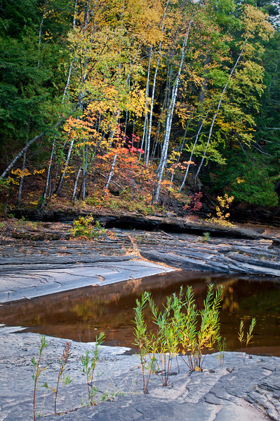 M 154                         Autumn color along the exposed shale riverbed of the Presque Isle River in the Porcupine Mountains Wilderness State Park, Michigan.