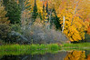 MI 167                        Fall colors on the Michigamme River in the Upper Peninsula of Michigan.