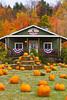 The Aadawegamik Trading Post selling pumpkins near Munising, Michigan, USA.