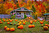 The Aadawegamik Trading Post selling pumpkins near Munising, Michigan, USA.