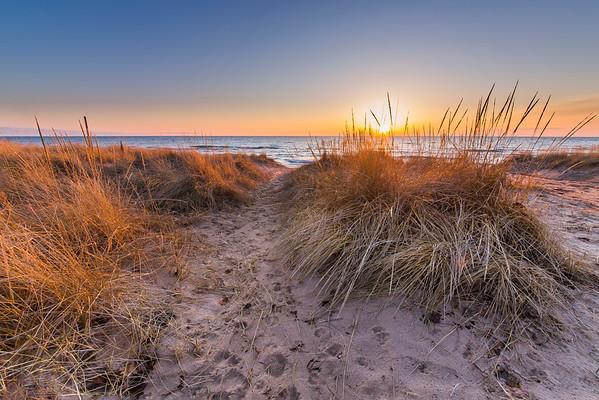 Pierport Beach Dunes