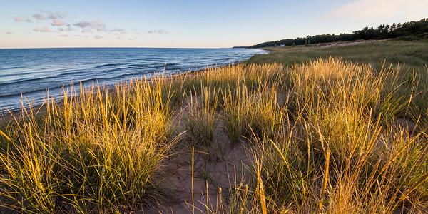 Onekama Shoreline Dune Grass