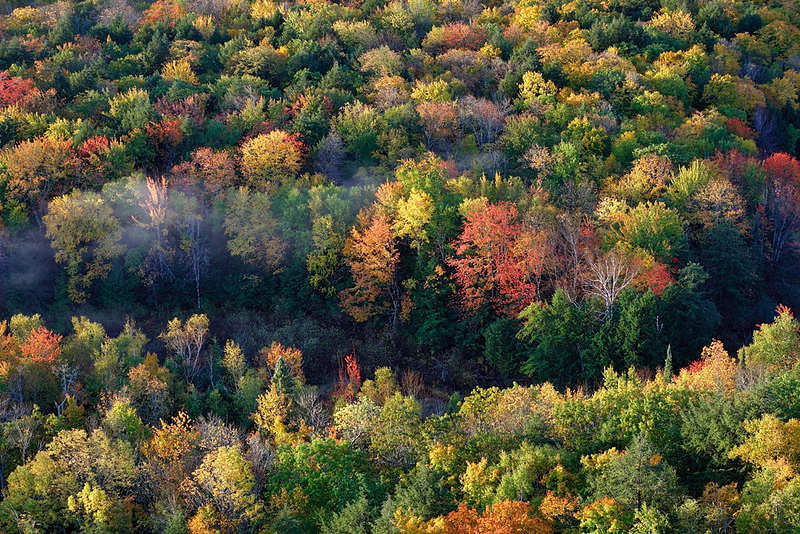 Freckled Fall - Big Carp River Valley (Porcupine Mountains State Park - Upper Michigan)