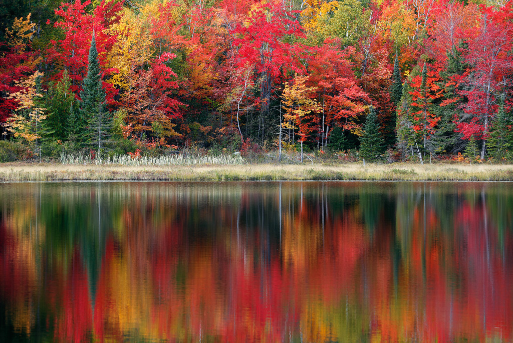 Huron Harmony II - Wetmore Pond (Huron Mountains - Upper Michigan)