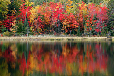 Huron Harmony - Wetmore Pond (Huron Mountains - Upper Michigan)