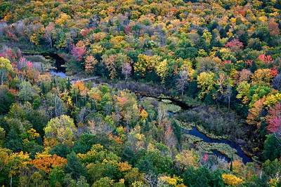 Crossing Autumn - Big Carp River Valley (Porcupine Mountains State Park - Upper Michigan)