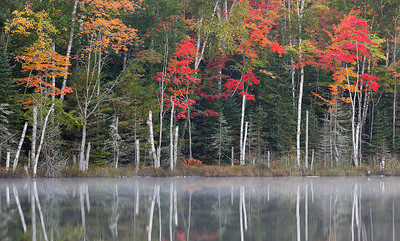 Lost Reflection - Red Jack Lake (Hiawatha National Forest - Upper Michigan)
