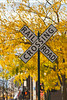 A railway crossing sign with fall foliage color in Petoskey, Michigan, USA.