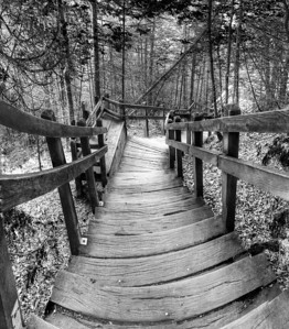 Stairway to Miner's Falls (Black & White)