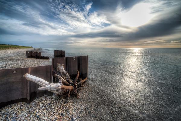 Driftwood on Point Betsie Shoreline
