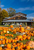 Pumpkins and squash for sale at the Pond Hill Farms along Highway 119 near Harbor Springs, Michigan, USA.