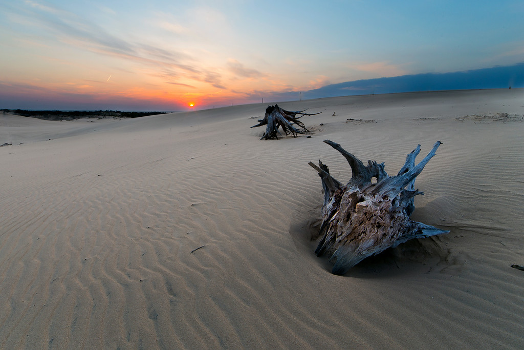 Silver Lake Sand Dune Sunset