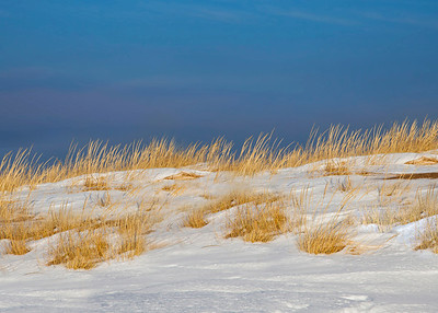 Snow Covered Dunes at Little Sable