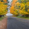 Fall on Esch Road