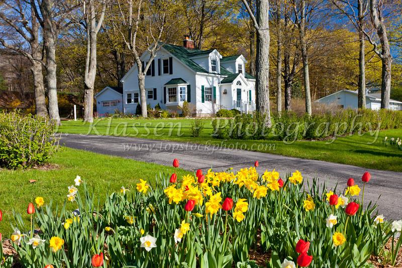 A homestead with spring flowers on the Leelanau Peninisula, Michigan, USA.