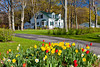 A homestead with spring flowers on the Leelanau Peninisula, Michigan, USA.