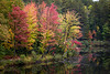 Vibrant fall colors can be seen around the bends of the Dead River. Marquette, MI<br /> <br /> MI-131003-0008