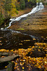 Autumn leafs accumulate between the rocks on the Laughing Whitefish River as it flows away from the falls. Alger County, MI<br /> <br /> MI-141002-0149