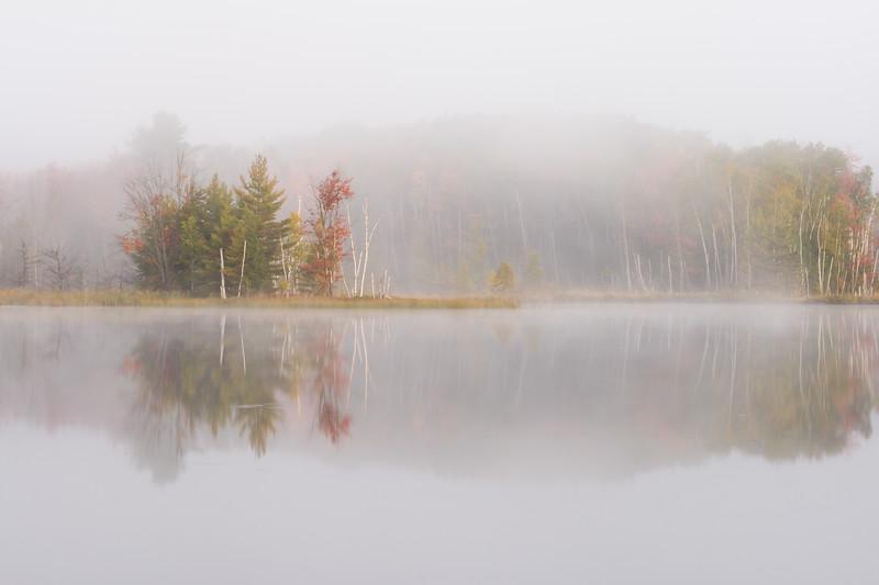 Autumn Color and Fog I