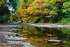 Autumn color is reflected in the still waters of the Riffle River. Upper Peninsula, MI<br /> <br /> MI-080925-0084