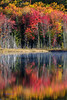 Fall color along Council Lake. Hiawatha National Forest, MI<br /> <br /> MI-120930-0457