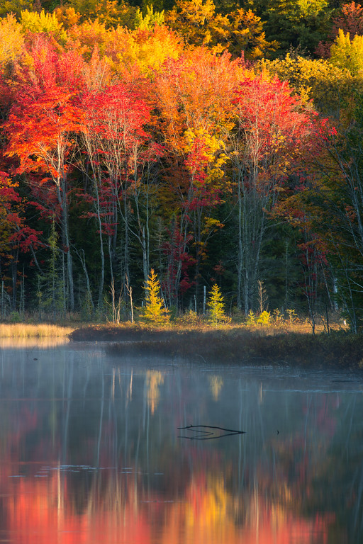 Fall color along Council Lake. Hiawatha National Forest, MI<br /> <br /> MI-120930-0406