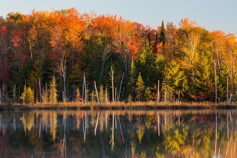 Fall color along Council Lake. Hiawatha National Forest, MI<br /> <br /> MI-120930-0391