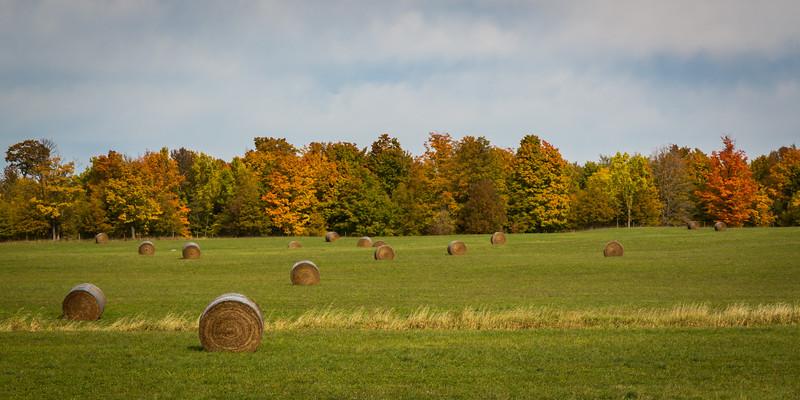 Farm field south of Hoghton along M-28. Houghton County, MI<br /> <br /> Mi-120928-0214