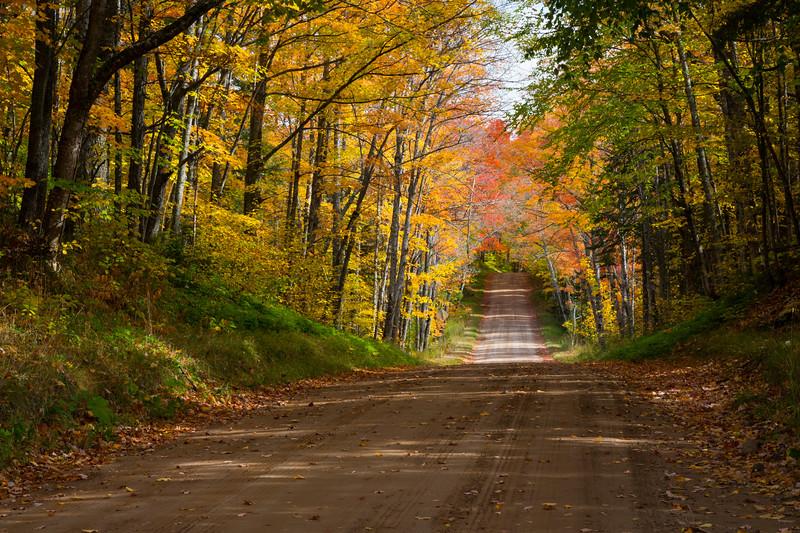 Trenary Road