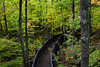 Sugarloaf Mountain Boardwalk